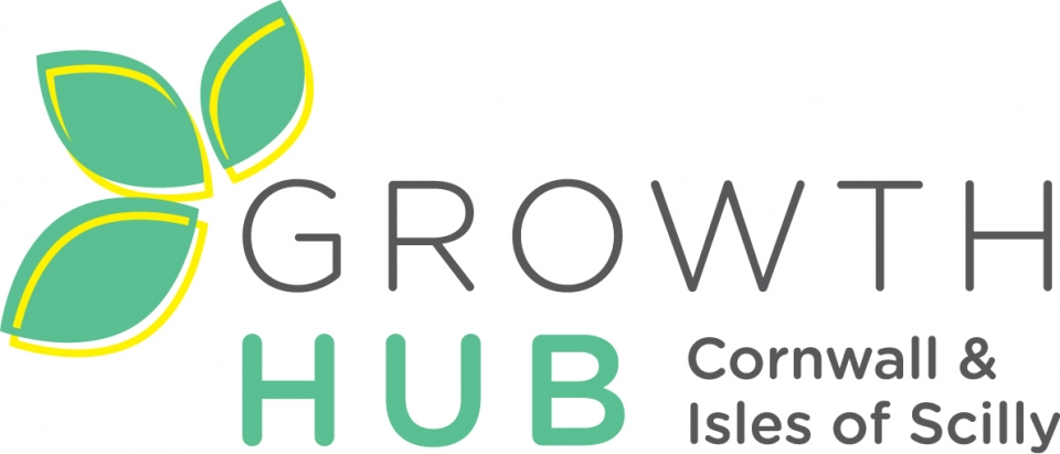 Image result for growth hub